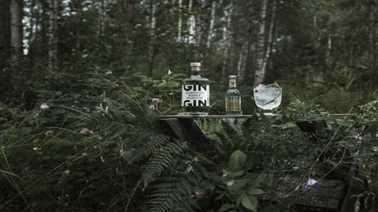 The world's best gin comes from Ostrobothnia in Finland, according to the jury of the International Wine & Spirit Competition.