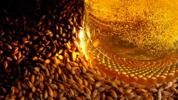Viking Malt is specially thrilled about acquiring the roasted malt production of DMG Poland to complement its existing specialty malt portfolio.