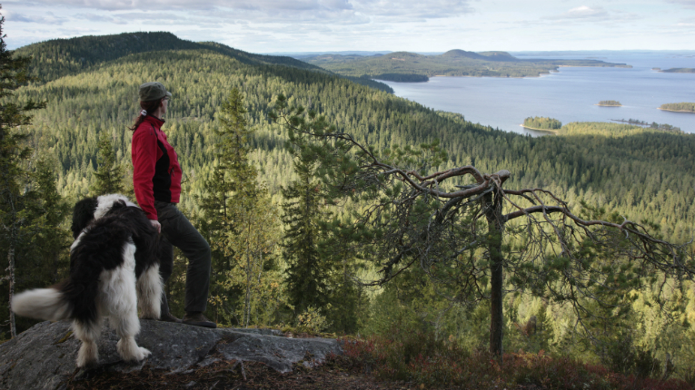 Finnish national parks received particular praise.