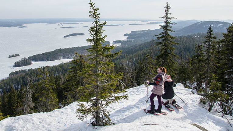 Exercise in nature, like snowshoeing in Koli National Park, has a clear positive impact on public health.