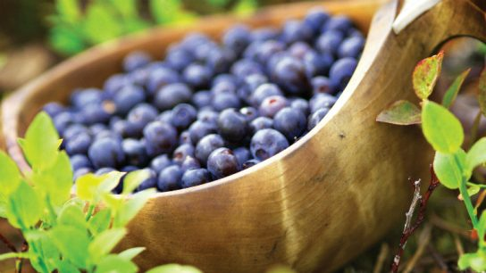 Finnish flavours grow in abundance during the northern summer.