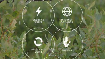 Cleantech Invest's portfolio of growth companies can be found in the cleantech sector. Each has a positive environmental impact and is often involved with new technologies.