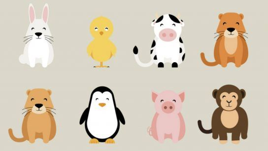 Pets come in all shapes and sizes. So too do the various animal welfare ideas from Finland.