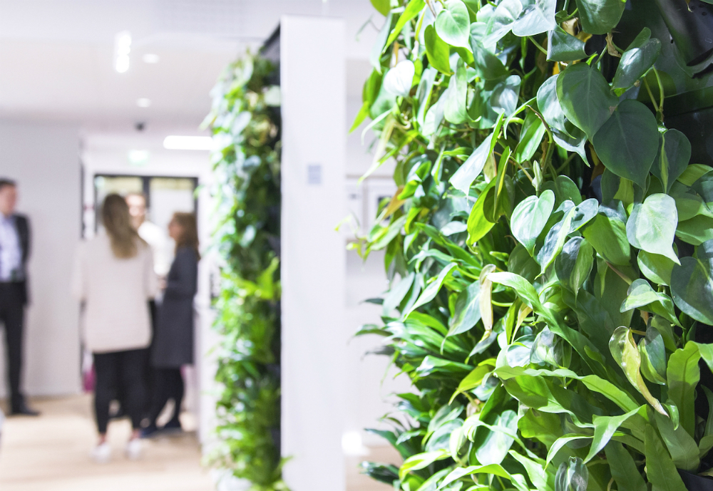 Finnish health tech company Naava has entered into a new venture with Teknion, one of the largest furniture manufacturers in the US. Teknion will showcase the Naava Green Wall The intelligent Naava Green Wall purifies and humidifies indoor air, and also acts as a space divider.