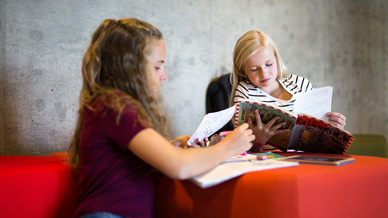 Finland ranks number one in literacy.