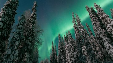 The Swiss have plenty of winter sports opportunities at home, but Lapland has other things, too. Like the incredible night sky.