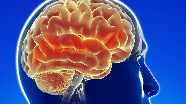 """""""Brain injury is one of the largest and most serious unmet medical needs in the world today,"""" Medicortex founder and CEO Dr. Adrian Harel told Good News from Finland in 2014."""