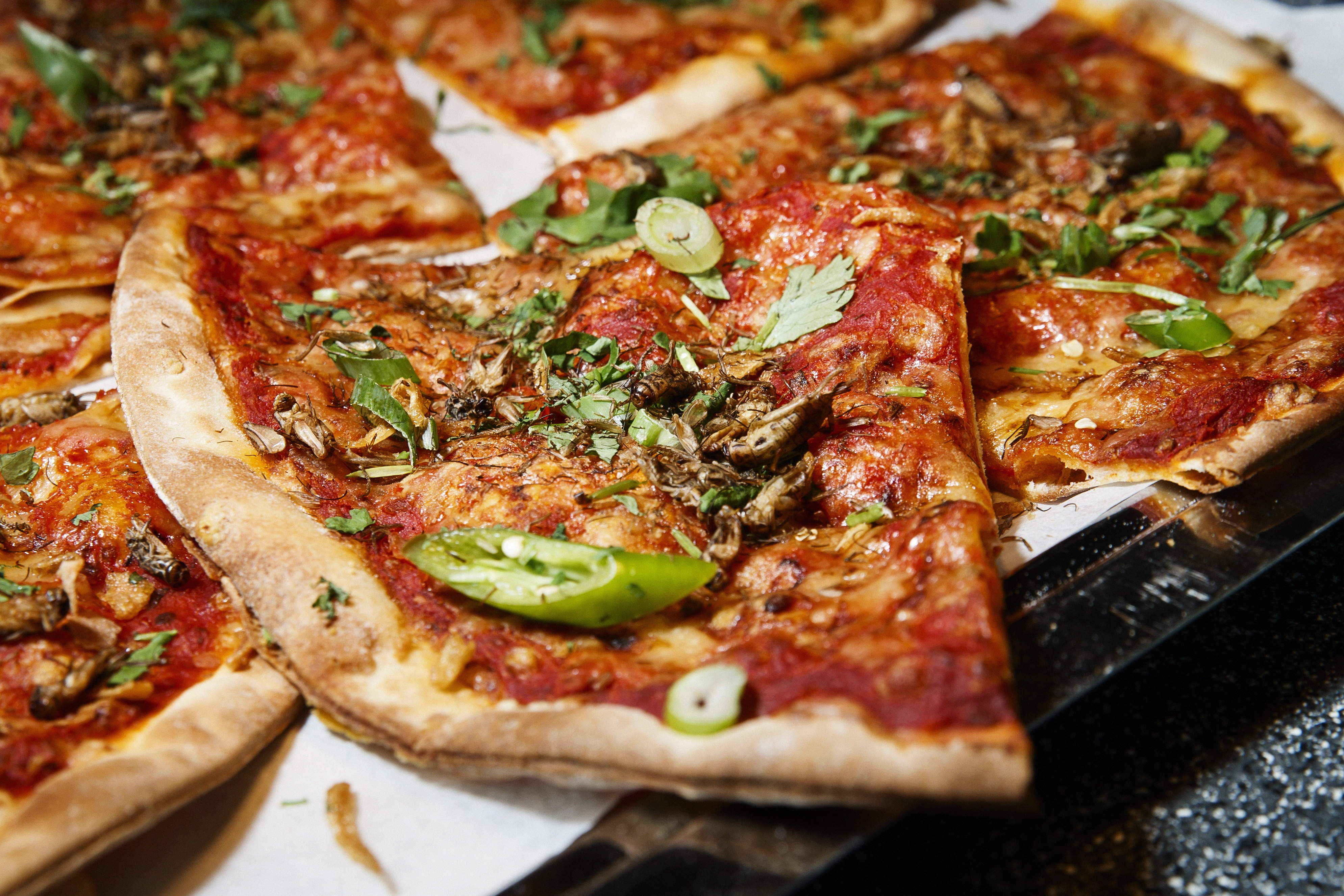 Anyone for dried crickets on pizza? Last week, Finland made international headlines with Fazer announcing its insect-bread, and Slush visitors were served their share of the crunchiness too.