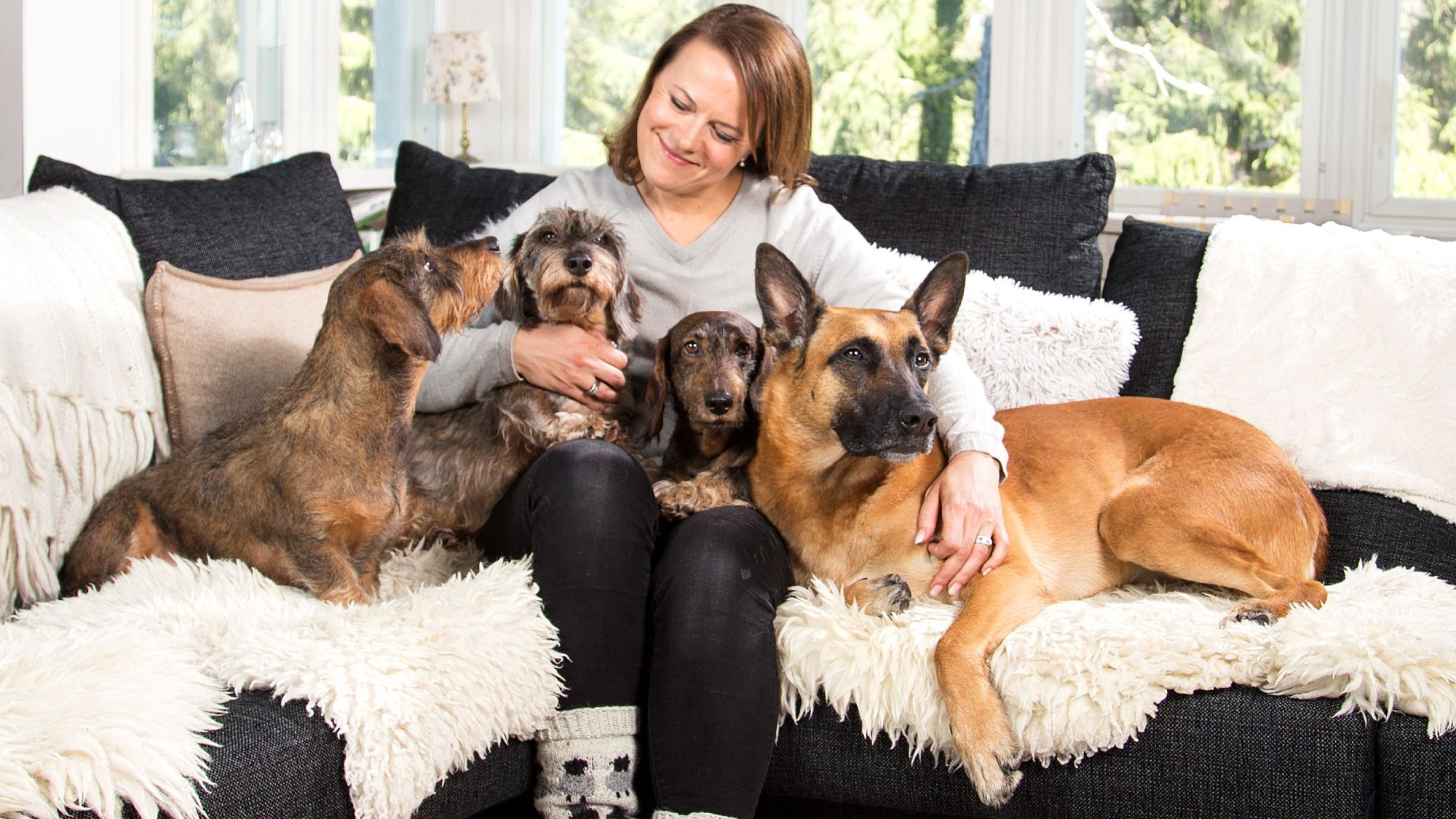 Woman sitting in a sofa accopannied with dogs