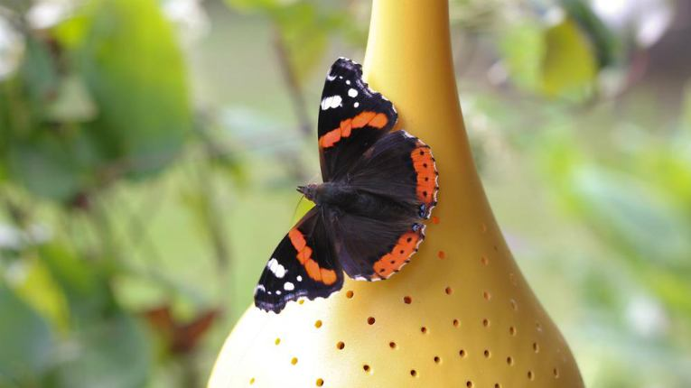 Belightful Design's award-winning first product is a butterfly feeder made of environmentally-friendly bio material.