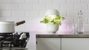 Plantui focuses on hydroponic indoor gardening.