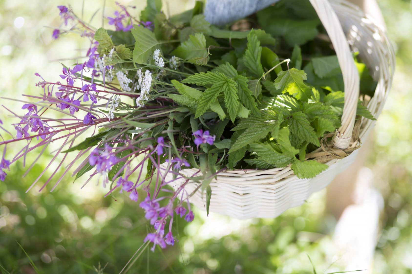 herbs and flowers in a basket