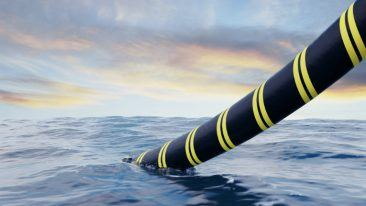 Subsea umbilicals are cables that are laid on the sea bed and are used to transmit telecommunications or electrical energy.