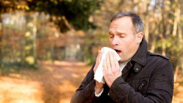 Desentum aims to ease the sneeze from allergies with a promising immunotherapheutic vaccine heading into first-in-human trials.