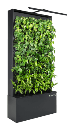 Naava brings the benefits of nature indoors.