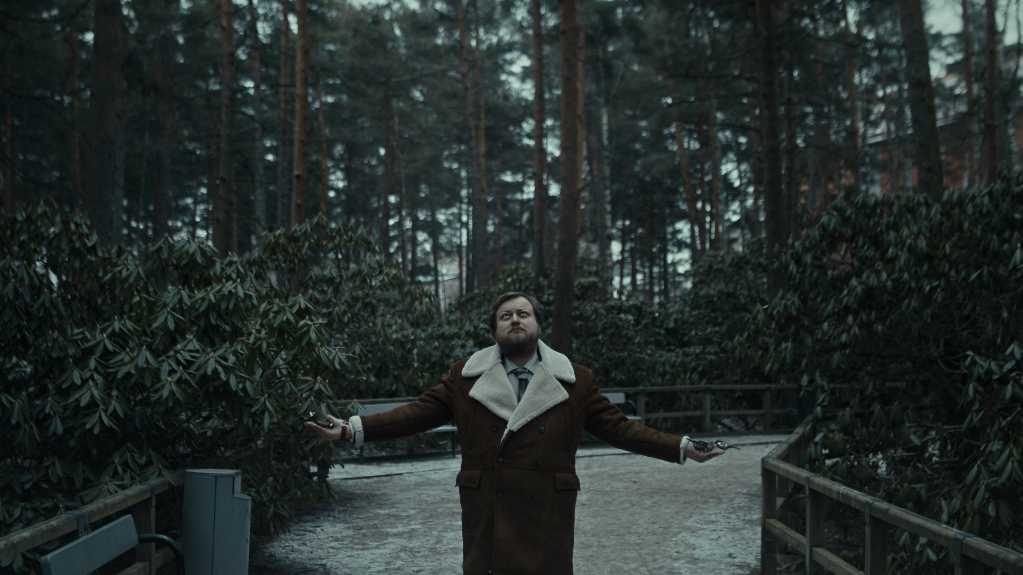 a man standing in a forest