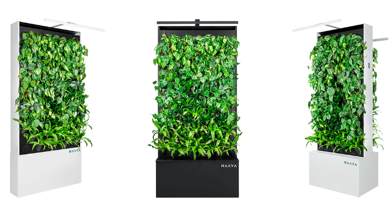 Naava will purify indoor office air with Teknion in North America.