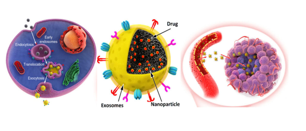 illustration of synthetic nanomaterials