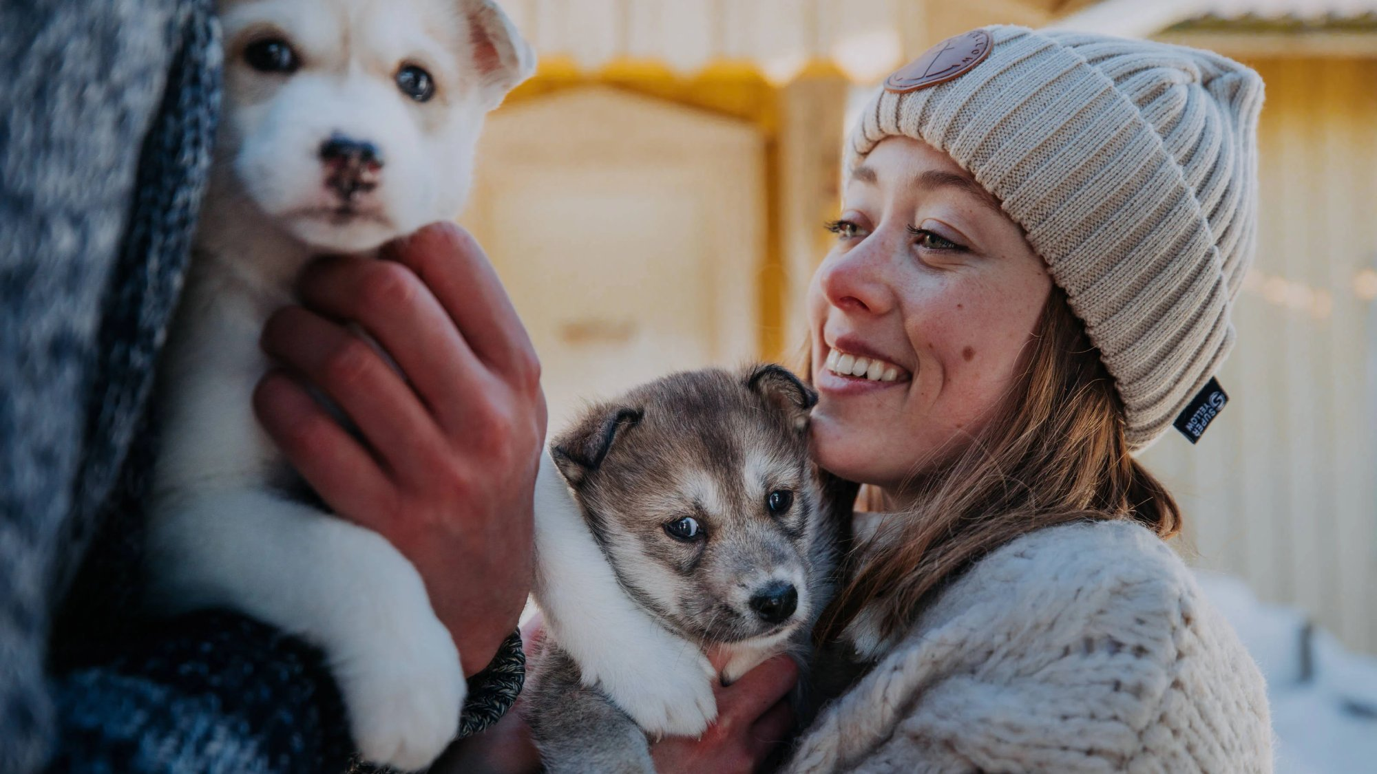 woman holding two husky puppies