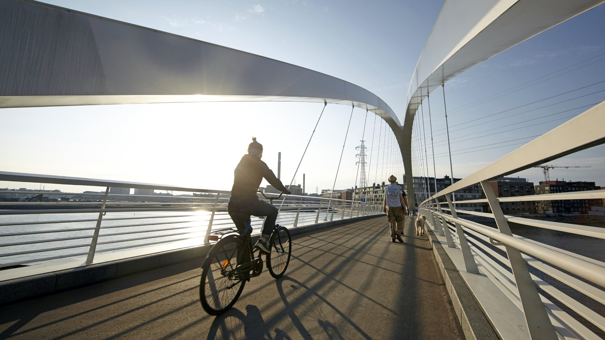 A cyclist and a pedestrian walking a dog crossing a bridge.