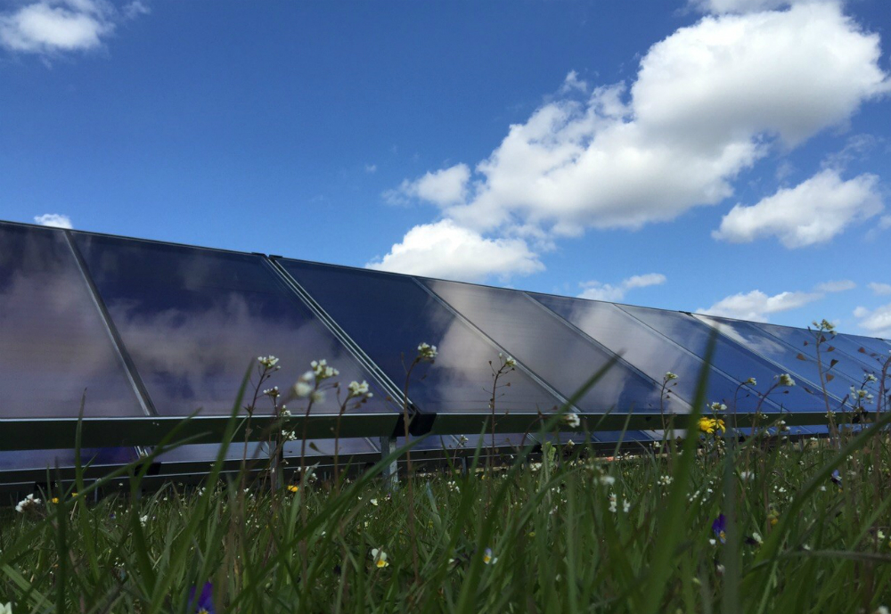 Solar thermal collectors on a field.