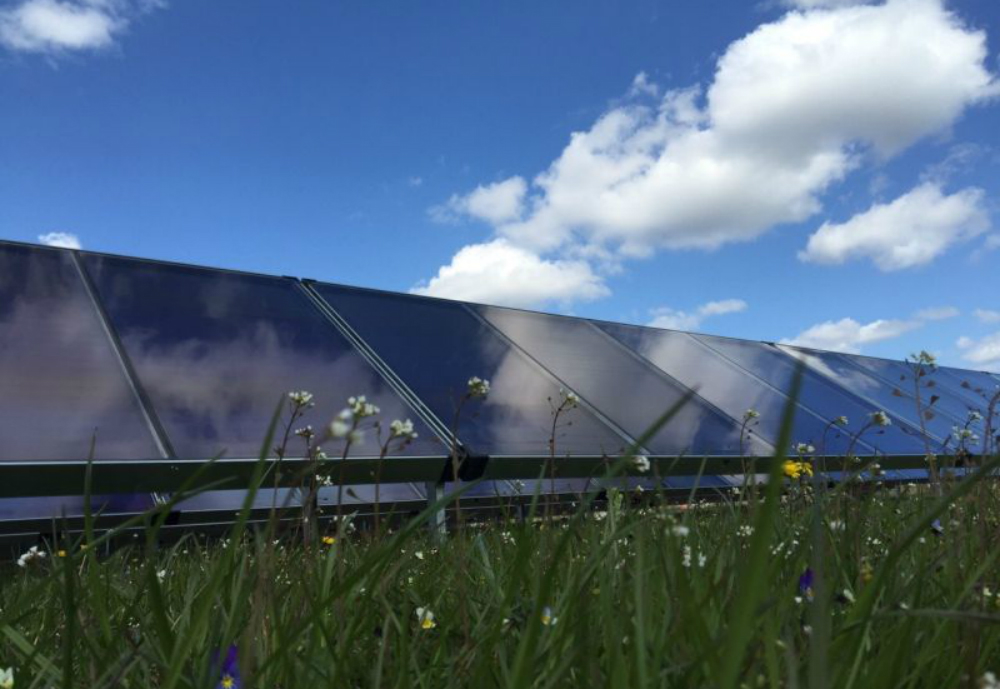 Solar cells on a field.