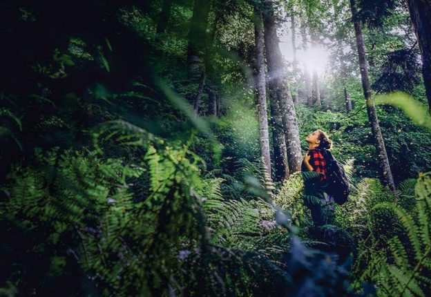 woman in dense forest