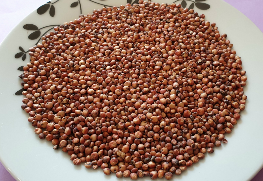 Grains on a plate
