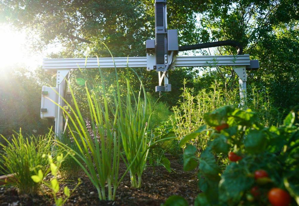 automated watering in backyard garden