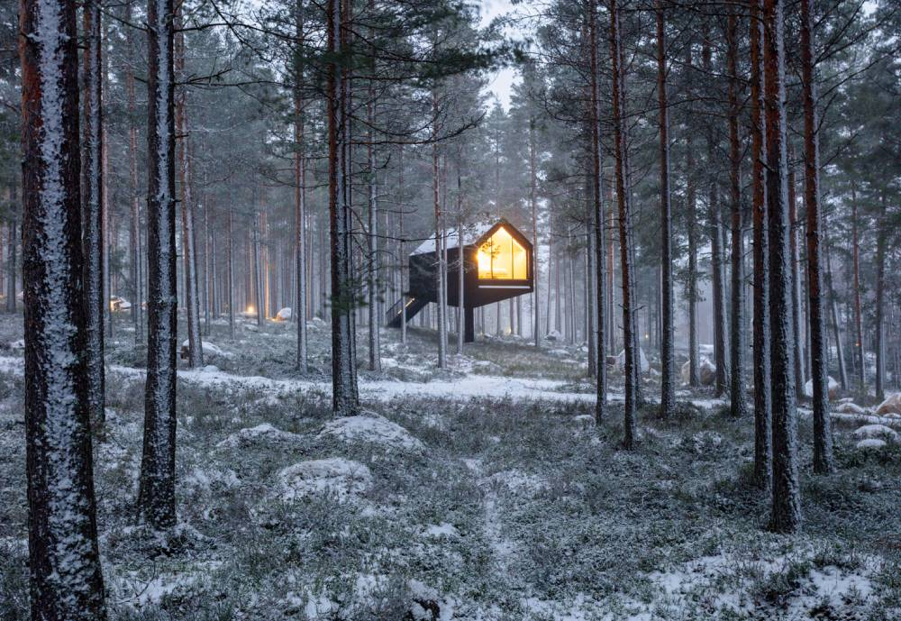 cabin with a light on in wintery forest