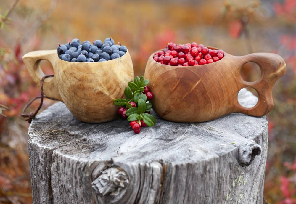 berries in cups on top of a tree stump