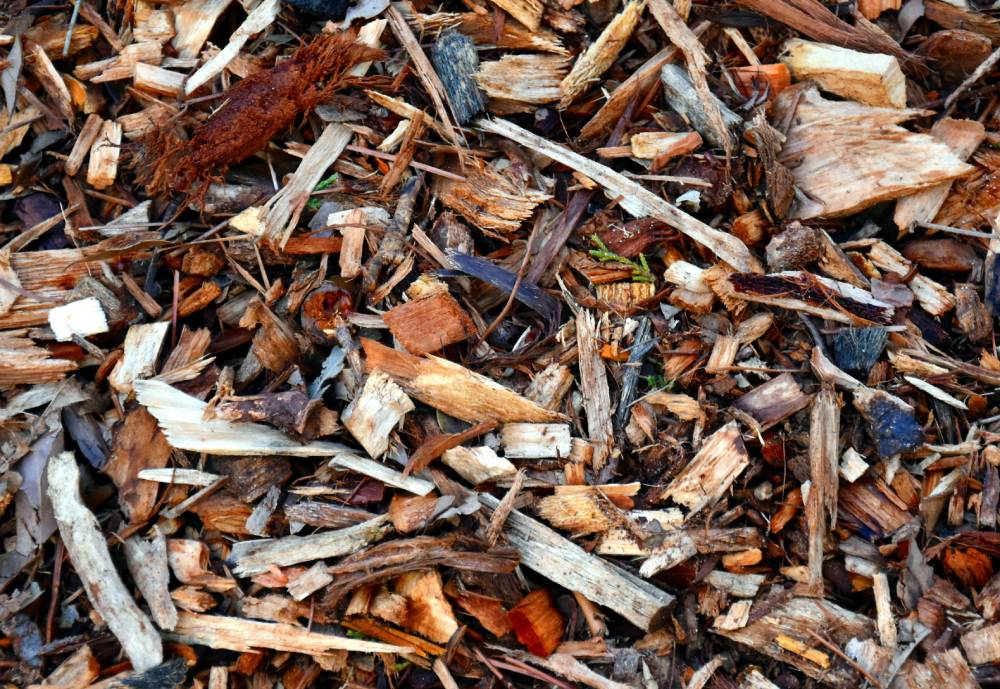 forestry residues