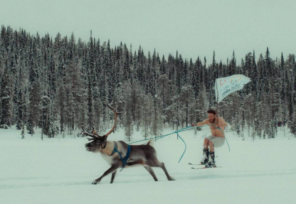 Man on skis being pulled by a reindeer