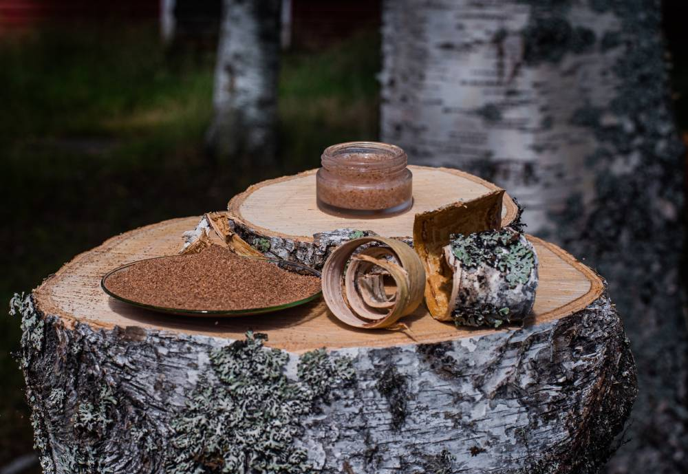 Curled up strips of birch bark and a tray of birch-bark powder on a tree stump.