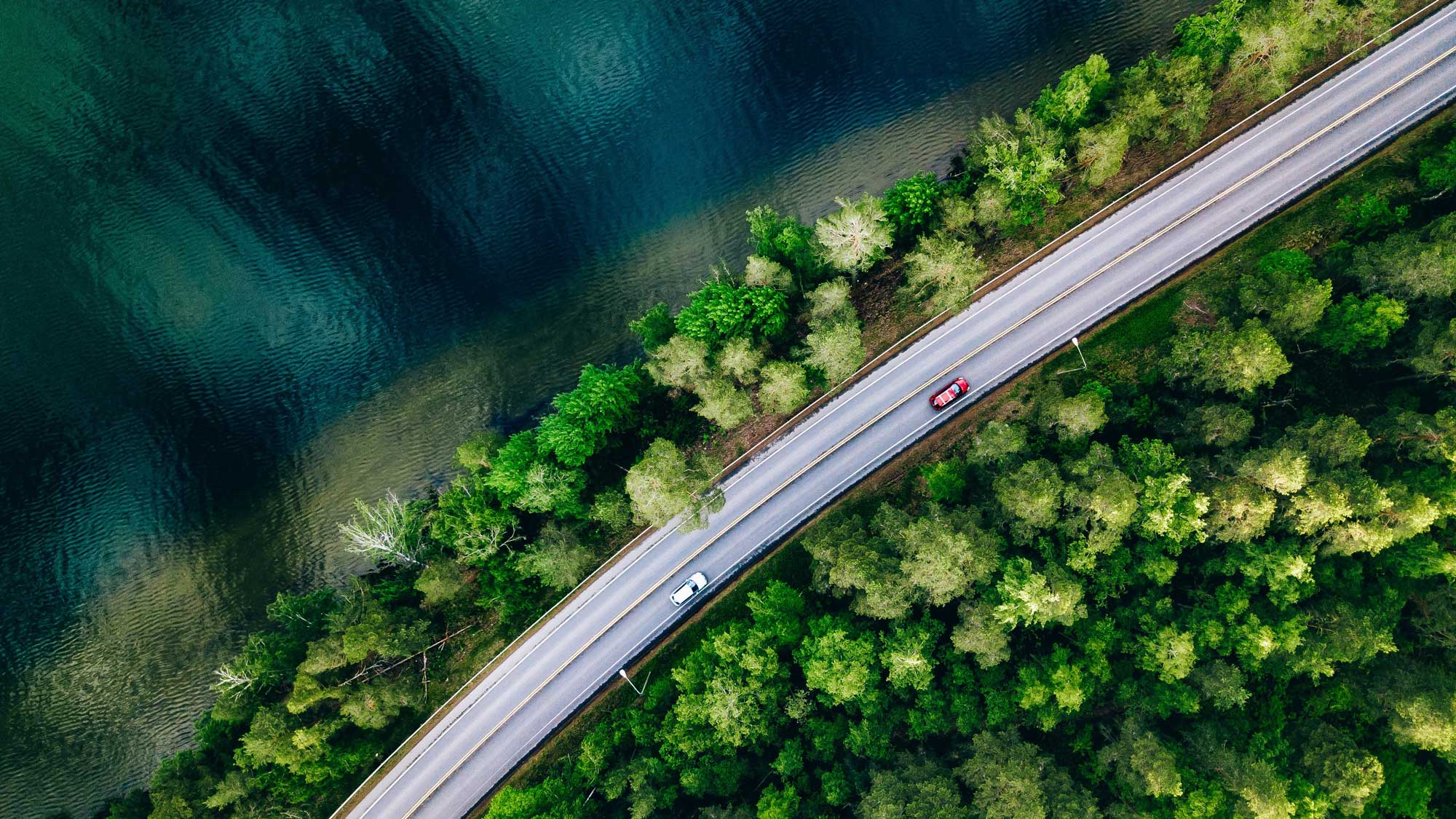 Aerial view of water, road, driving cars, and forest on a summer day