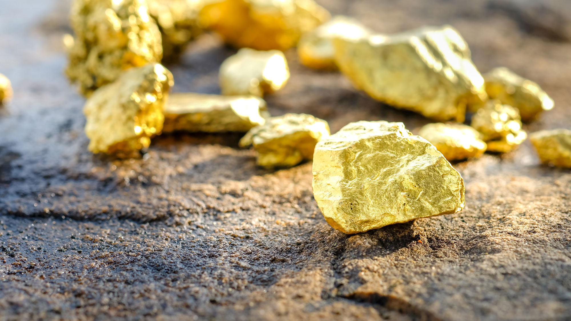 Gold nuggets laying on a rock